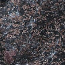 Silhouette Black Granite Slabs & Tiles