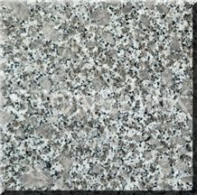 Slga-135,Zhangpu Pearl Flower,Slab,Tile,Flooring,Wall Cladding,Skirting