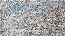 Royal Palm Granite Tile, China Granite Tile & Slab