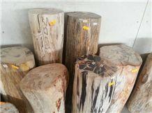 Petrified Wood,Fossilized Wood Stone,Luxary Natural Decorative Stone