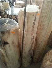 Petrified Wood,Fossilized Wood Stone,Natural Luxary Decorative Stone,High Value for Collection