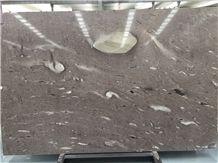 Cygnus Quartzite Slabs & Tiles, New Product Best Price, Brazil Brown Quartzite