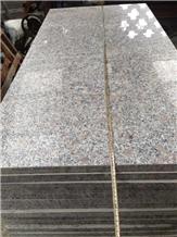 G383 Light Grey Granite Steps