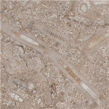 Swaledale Fossil Brown Limestone Tiles