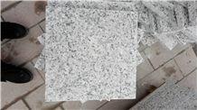 Fantastic Pear Flower White Granite Tile, China White Granite