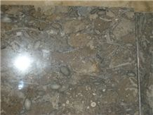 Fossil Brown Limestone Flooring Tiles
