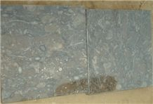 Fossil Brown Slabs 60x60