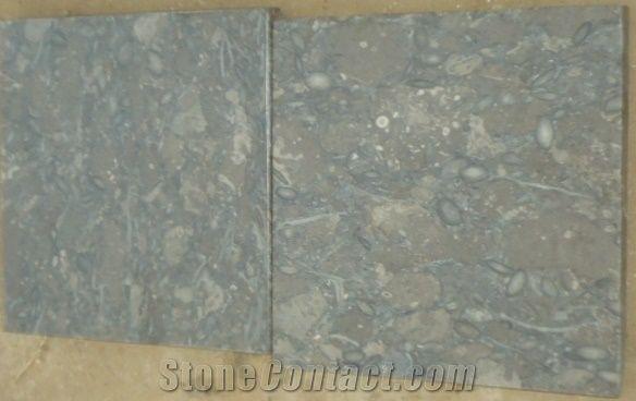 Fossil Dark Gray Limestone Slabs Flooring Grey Stan Tiles
