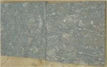 Fossil Dark Gray Limestone Tiles