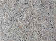 Discount G383 Pearl Flower Grey Granite Tiles, Slabs, Pavement