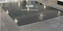Silver Limestone Swimming Pool Pavers, Coping