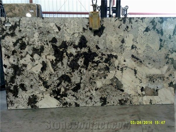 Vintage Delicatus Granite Slabs From United States