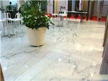 Polished Sea Pearl Quartzite Flooring Tile,Brazil White Quartzite Slabs & Tiles