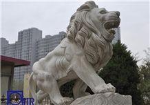 White Marble Lion Statues,G682 Granite Lion Statue