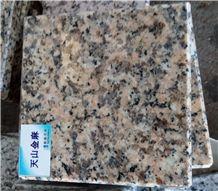 Tianshan Gold Granite Tile & Slab Support Door to Door Transporation, China Yellow Granite