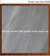 Cloudy Veins Grey Marble