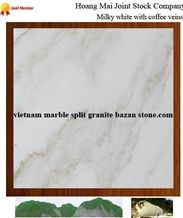 White Marble with Coffee Veins