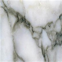 Buy Arabescato Marble Tiles, Steps, Risers
