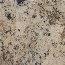 Absolute Cream Granite