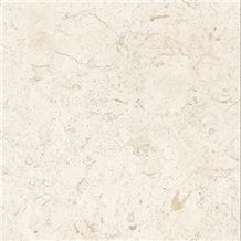 Bone White Limestone