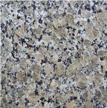 Butterfly Beige Granite