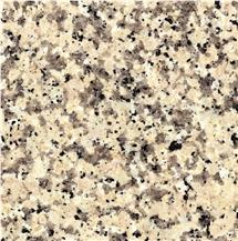 Crema Terra Granite