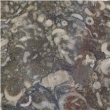 Derbyshire Limestone