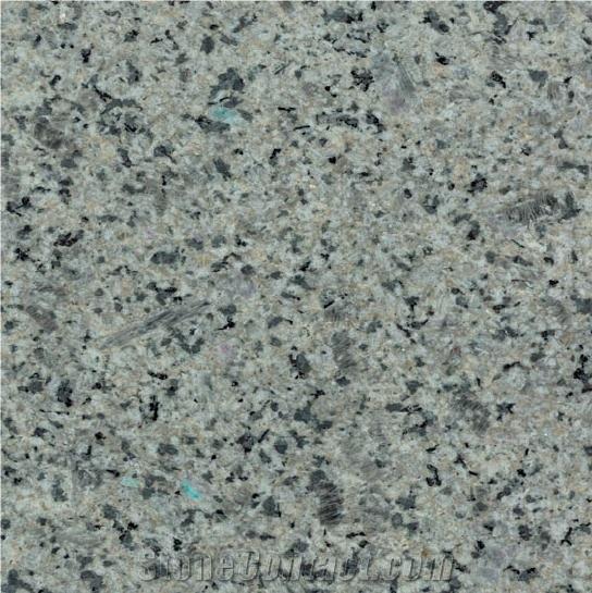 dolphin-tile-13219-1B.jpg
