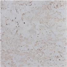 Dominican White Coral Stone