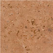 Fossil Gold Limestone