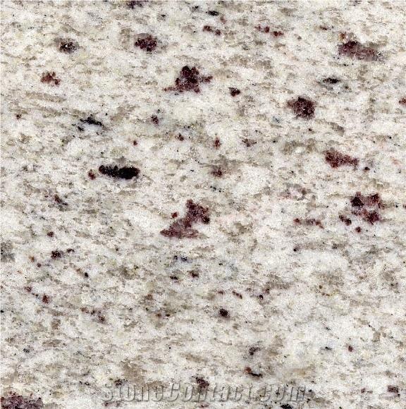 White Galaxy Granite Kitchen: StoneContact.com