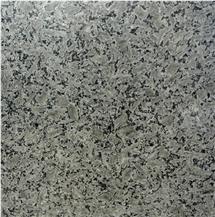 Grigio Scuro Granite