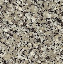 Gris Perla Granite