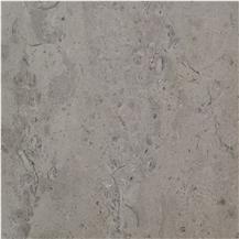 Halkyn Fossil Limestone