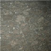 Ocean Fossil Marble