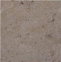 Piedra Coralina Coral Stone