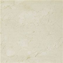 Shelly Beige Limestone