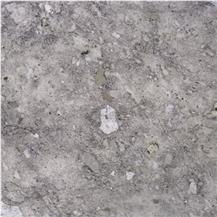 Silver Fox Limestone