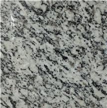 Silver Grain Granite