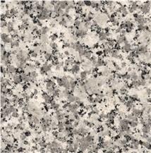 Strzegom Granite