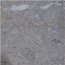 Swaledale Fossil Grey