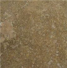 Travertine Dark Walnut