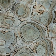 Turtle Green Quartzite