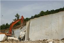 /picture/Quarry/201108/56402/fossil-beige-marble-quarry-quarry1-236B.JPG