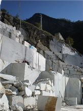 /picture/Quarry/201108/67623/bianco-carrara-marble-quarry-piastriccioni-balena-quarry1-122B.JPG