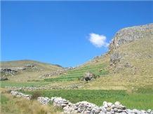 /quarries-962/canteras-andinas-alpaca-travertine-quarry