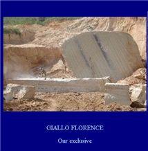 /picture/Quarry/201301/62215/giallo-florence-granite-quarry-quarry1-1377B.JPG
