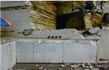 /picture/Quarry/201307/95568/golden-flower-black-wooden-marble-quarry1-1777B.JPG