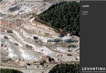 /picture/Quarry/201404/17851/caliza-capri-limestone-quarry-quarry1-2269B.JPG
