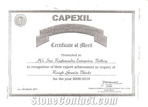 BEST EXPORT PERFORMANCE AWARD FROM CAPEXIL